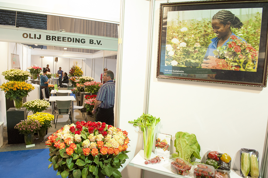 5.Hortiflora Expo Ethiopia 2013, which is financed by Dutch development cooperation