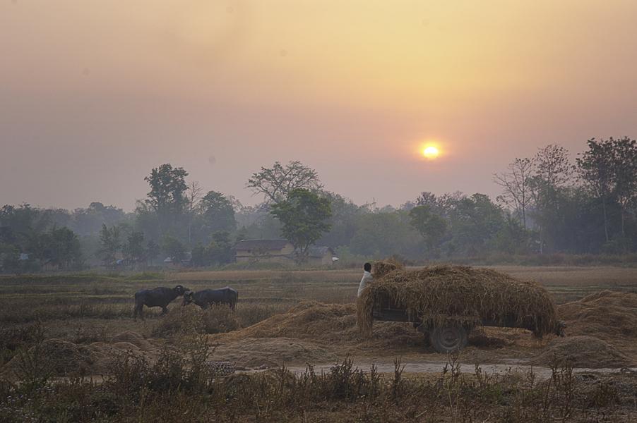 Lumbini (Regione di Rupandehi), 10 aprile 2011: il luogo in cui intorno al VI secolo a.C. la Regina Maya avrebbe dato alla luce Siddhartha Gautama