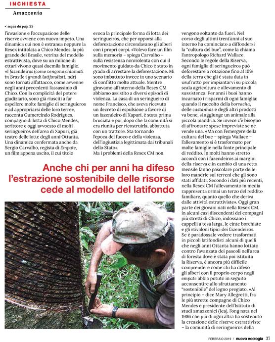la-guerra-di-bolsonaro-la-nuova-ecologia-2-19-3