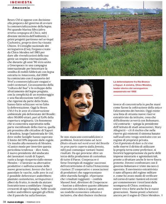 la-guerra-di-bolsonaro-la-nuova-ecologia-2-19-4