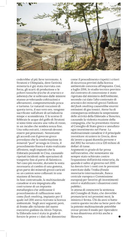 loro-della-calcidica-nuova-ecologia-3-19-4