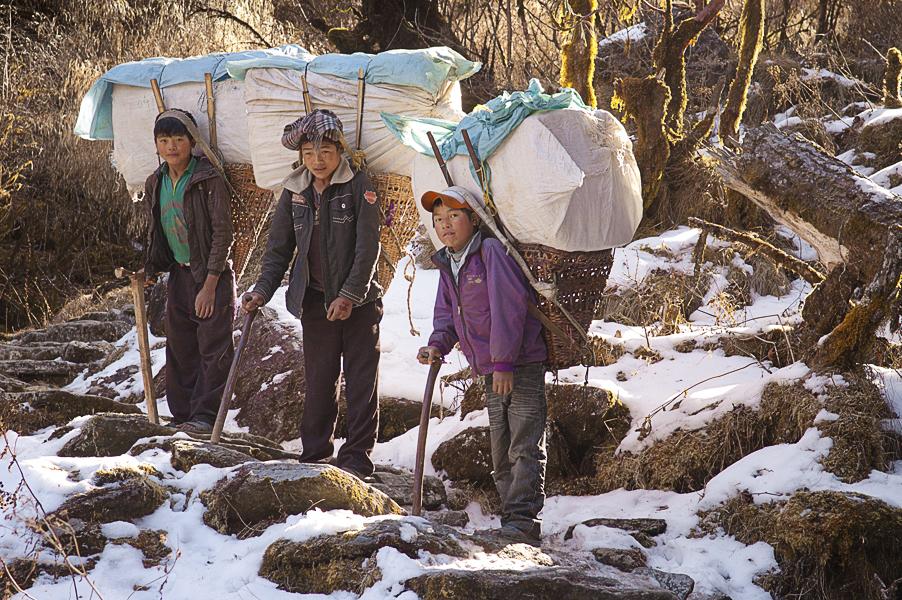 Young Sherpa climbing Salpa La, Eastern Nepal