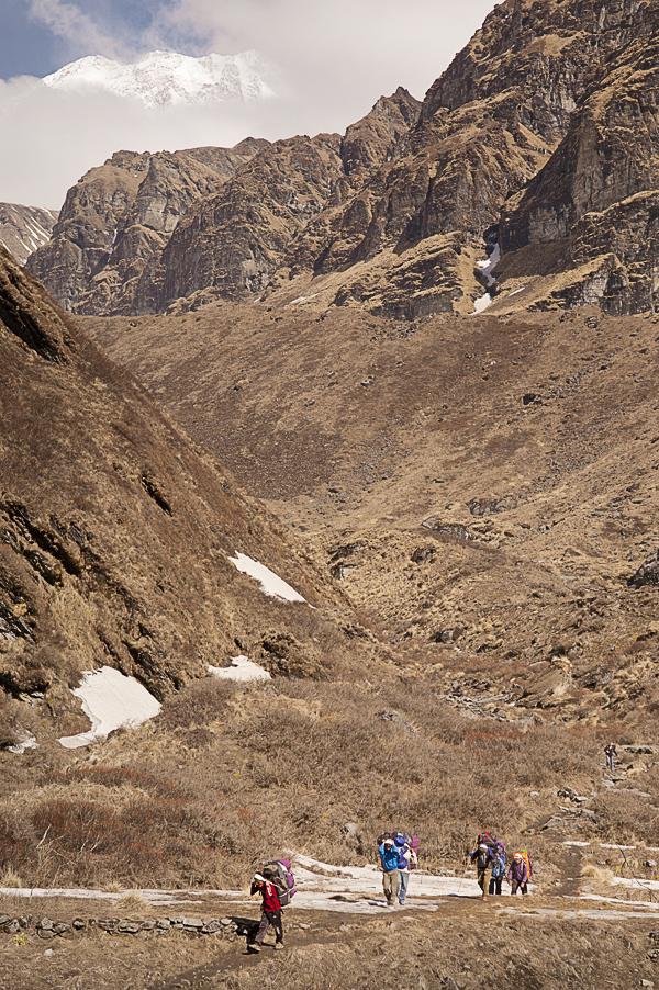 sherpa-on-the-annapurna-sanctuar-trek