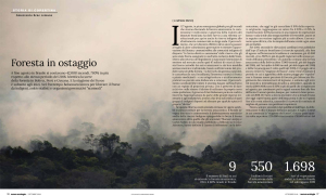 amazzonia-nuova-ecologia-10-19-1e2