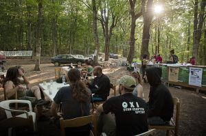 Sunrise at the Nogold activists camp in Skouries forest