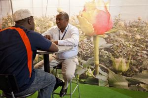 Hortiflora Expo in Addis Ababa