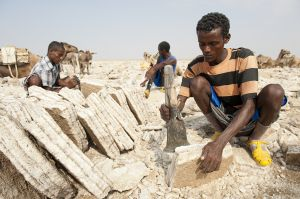 Edele (cutter) making ganfur (salt slabs) under midday sun in the Danakil region