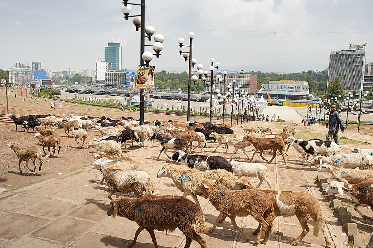 1.Meskel square, main Addis Ababa square.jpg