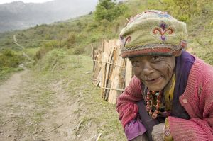 Tamang woman carring brushwood on the way to Tadapani village